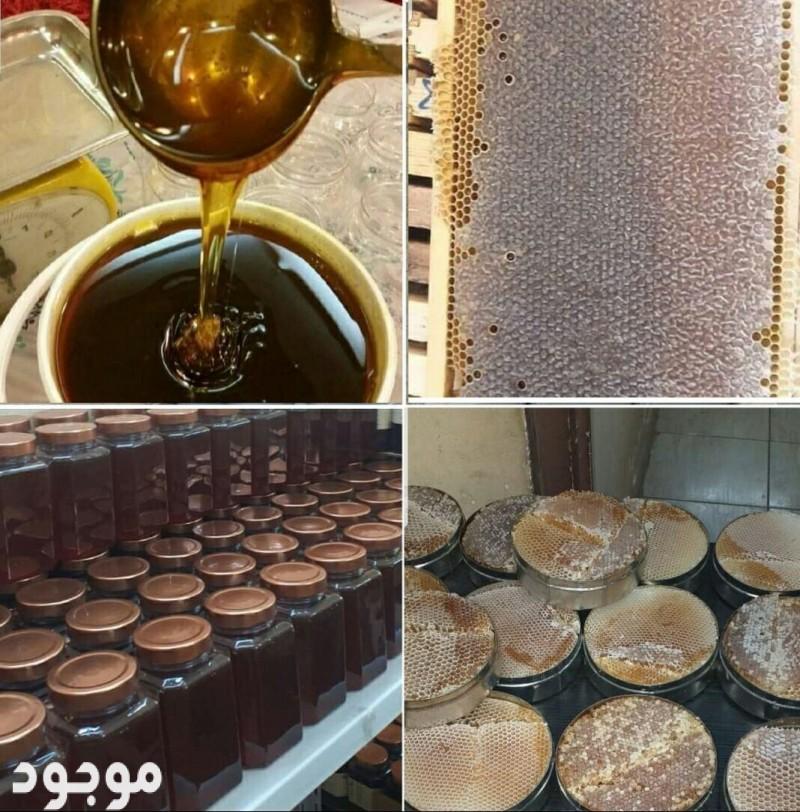 عسل السدر الجبلي السعودية